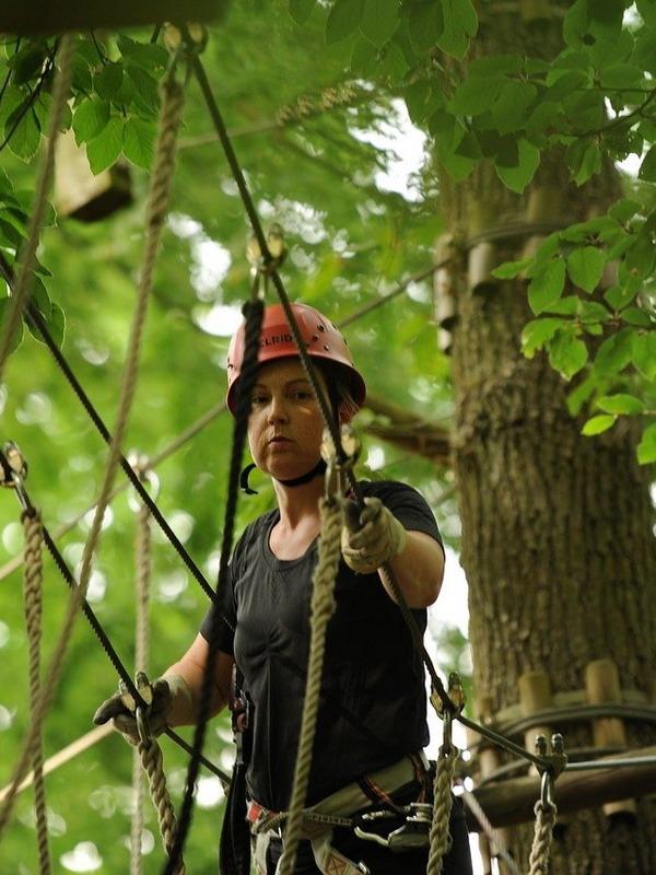 Лесной парк развлечений